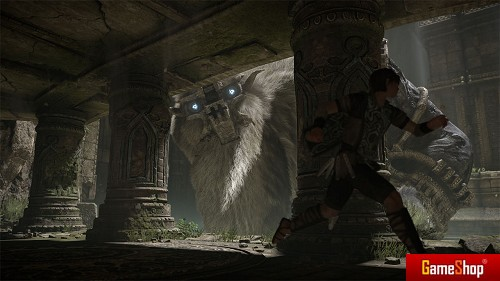 Shadow_of_the_Colossus__uncut_Edition__31408.jpg